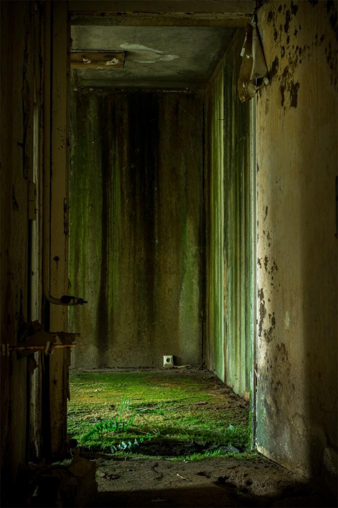 Green room-web